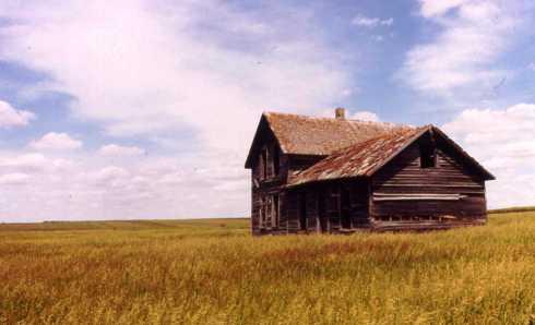 Skeletons of the Prairie